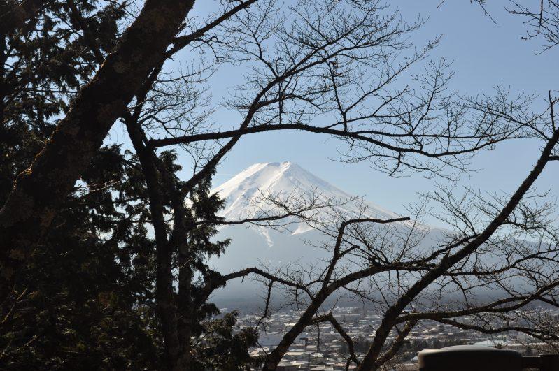 Viagem ao Japão: JR PASS o Cartão de Transporte Japonês